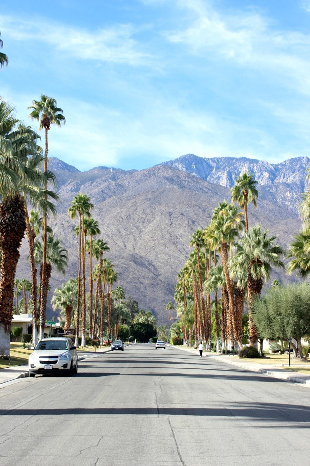 Palm Springs- colourful travel diary, where to eat, what to do,