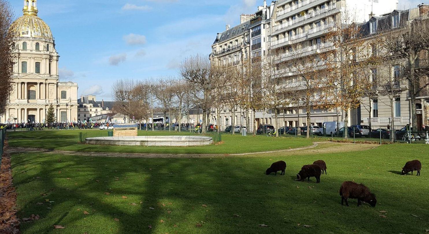 Ecopastoreo en Paris