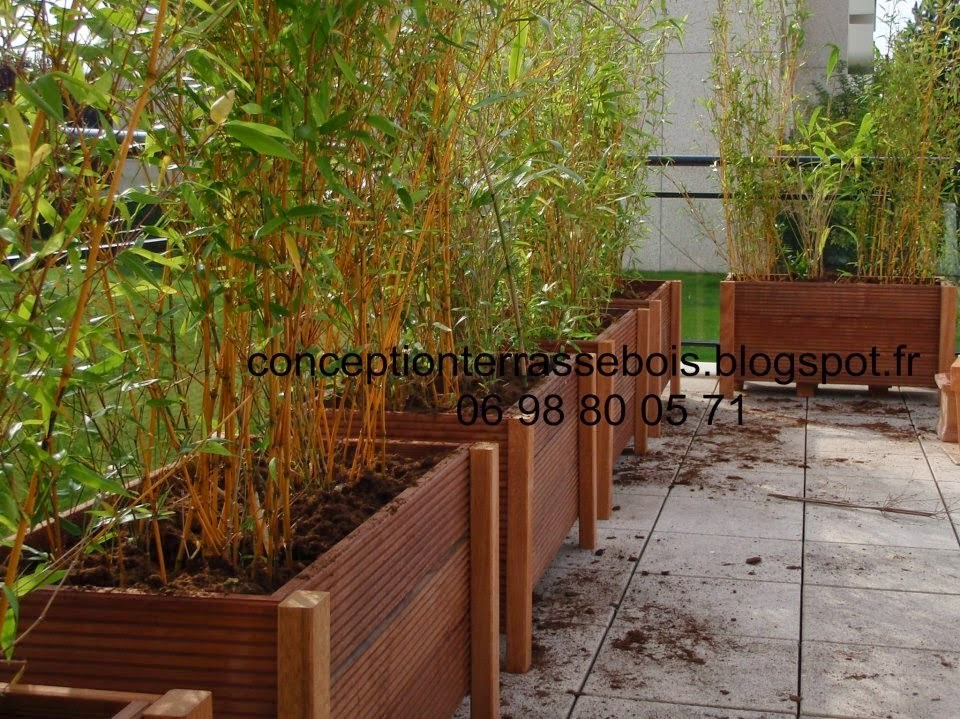 Conception d 39 une terrasse en bois am nagement de balcon for Amenagement pelouse