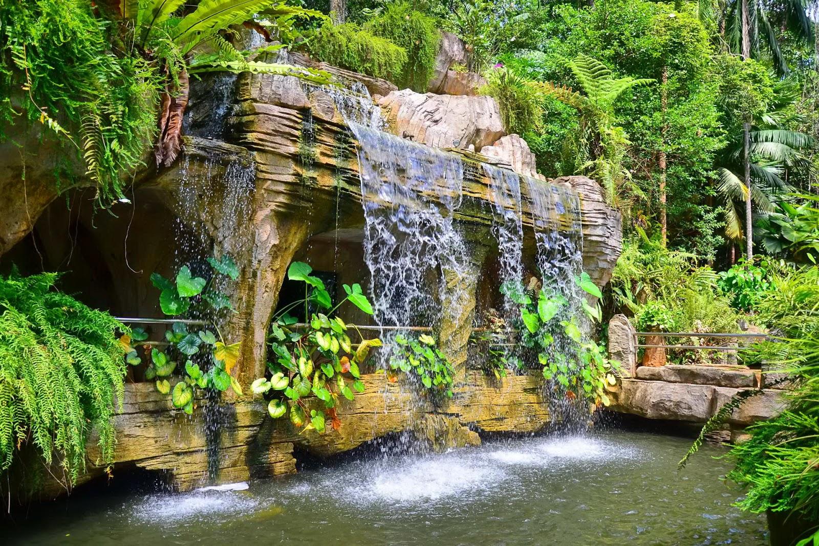 Arte y jardiner a jardin acu tico for Jardin acuatico