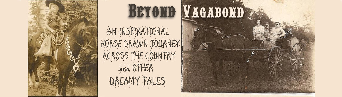 Beyond Vagabond