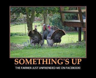 Funny Thanksgiving MeME