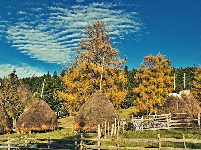 peisaj rural langa vila leonida busteni