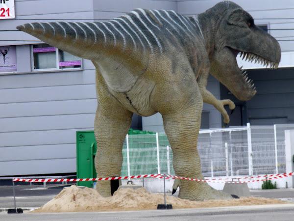 O Mundo dos Dinossauros - Exposalão Batalha