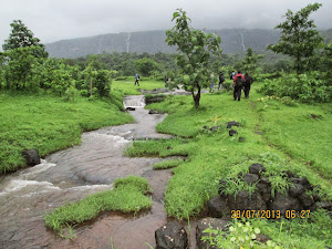 Walking across lush greenery and rice fields towards Mount Bhimashankar base.