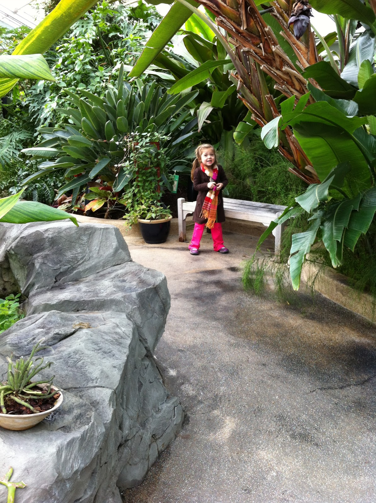 A Childhood List 48 The Rawlings Conservatory And