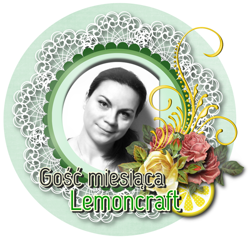 http://blog.lemoncraft.pl/2013/09/gosc-miesiaca.html