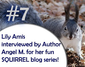 Lily Amis interviewed by American Author Angel M.