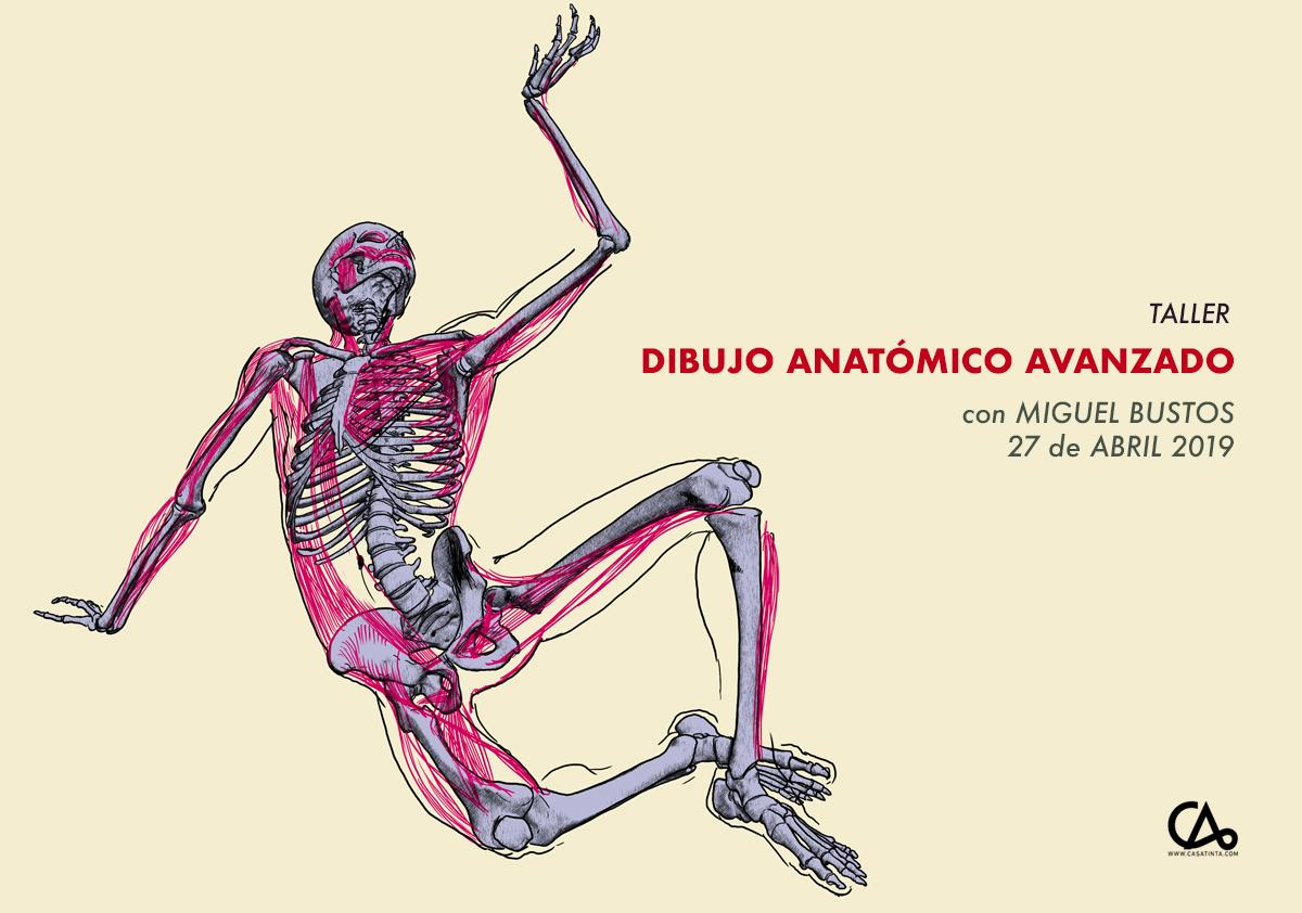 DIBUJO ANATÓMICO INTENSIVO // 27 de abril