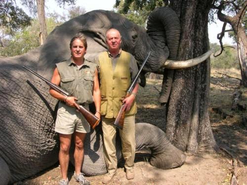 cacería de elefantes