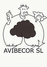 AVIBECOR SL