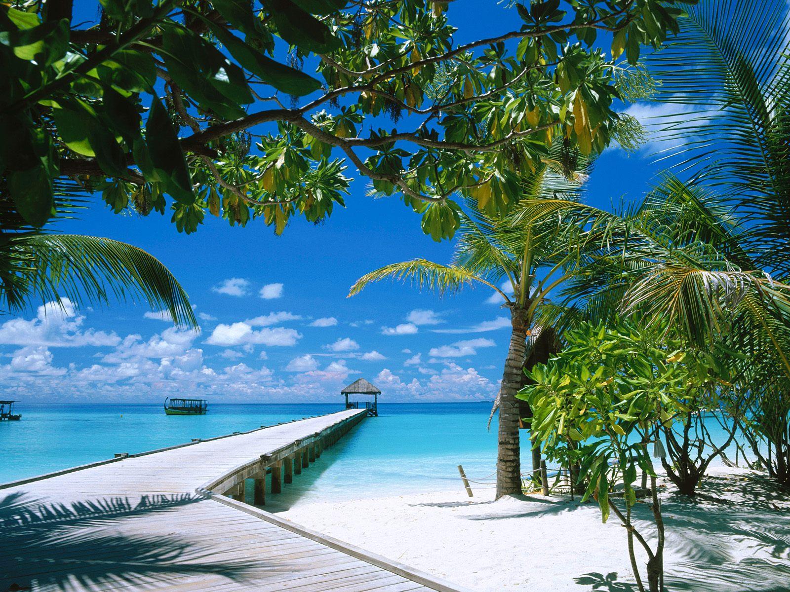 http://3.bp.blogspot.com/-Hw3XJkNN1Dc/T8X1iZXKkmI/AAAAAAAAAcw/_OoY3ahVexM/s1600/Beach+Wallpaper+Hd+Picture.jpg