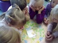 Lapsed vaatlevad tigu