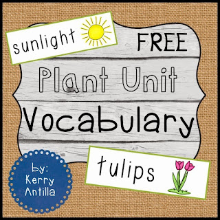 https://www.teacherspayteachers.com/Product/FREE-Plant-Unit-Vocabulary-629160