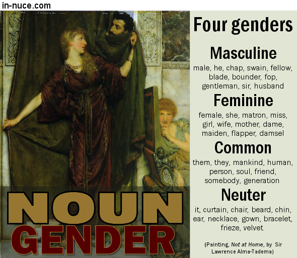 in-nuce.com noun gender