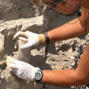 Археологи изучают уникальный памятник под Новороссийском