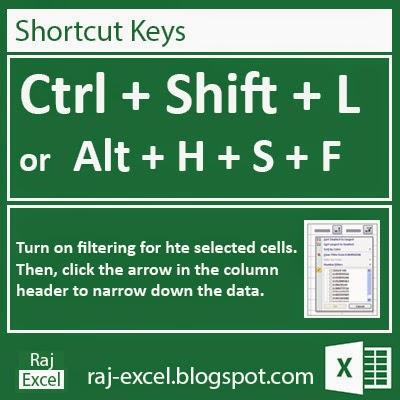 Microsoft Excel 2013 Short Cut Keys: Ctrl + Shift + L (Filter the Data)