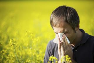 Why do we get a pollen allergy?
