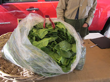 Greenmarket Friday, March 11, 2011
