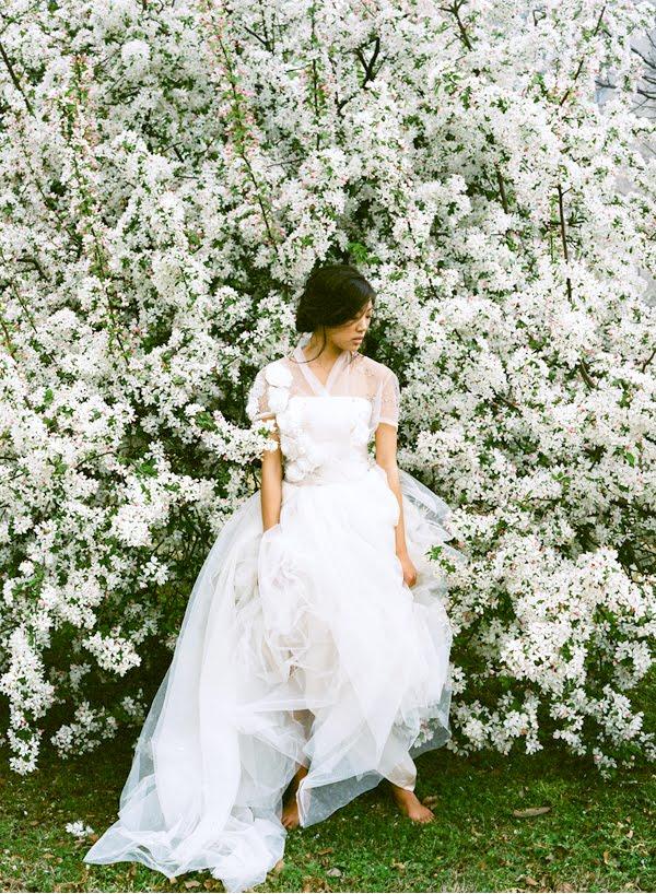 Dollar Tree Weddings
