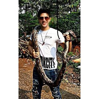Foto Ammar Zoni Memegang ular