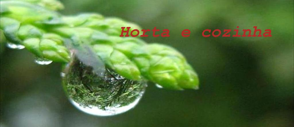 horta e cozinha