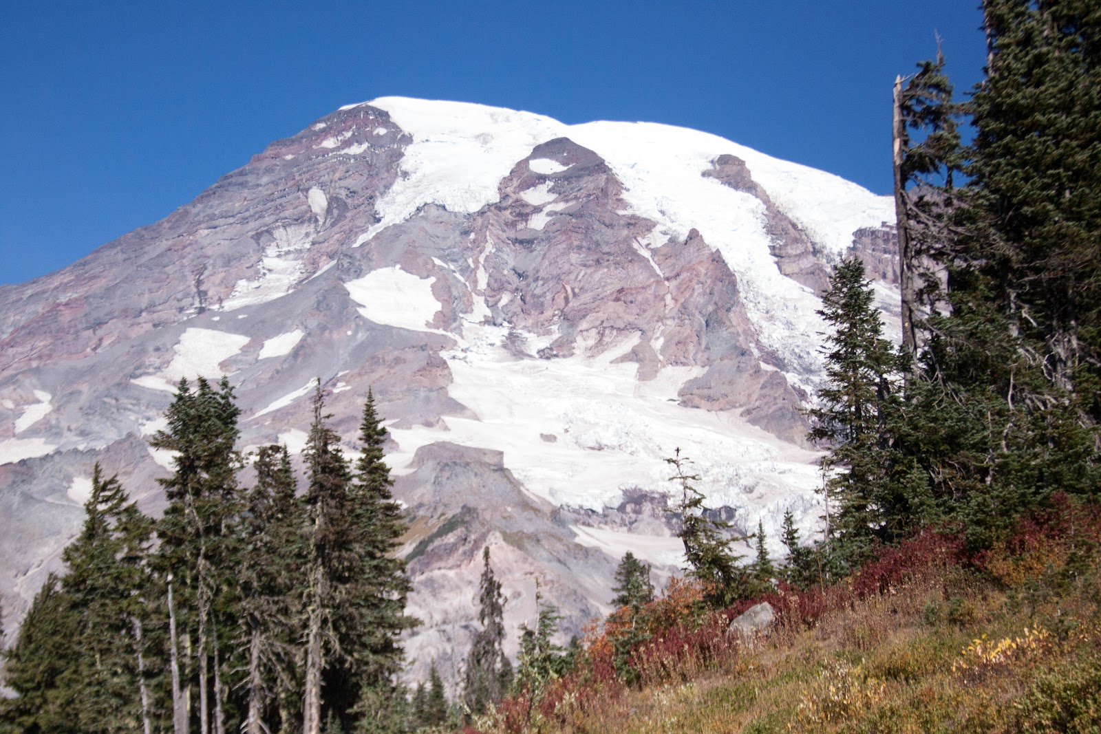mount rainier cougar women Washington state's three national parks — mount rainier, olympic and north cascades — have received a $1 million donation from the estate of a woman.