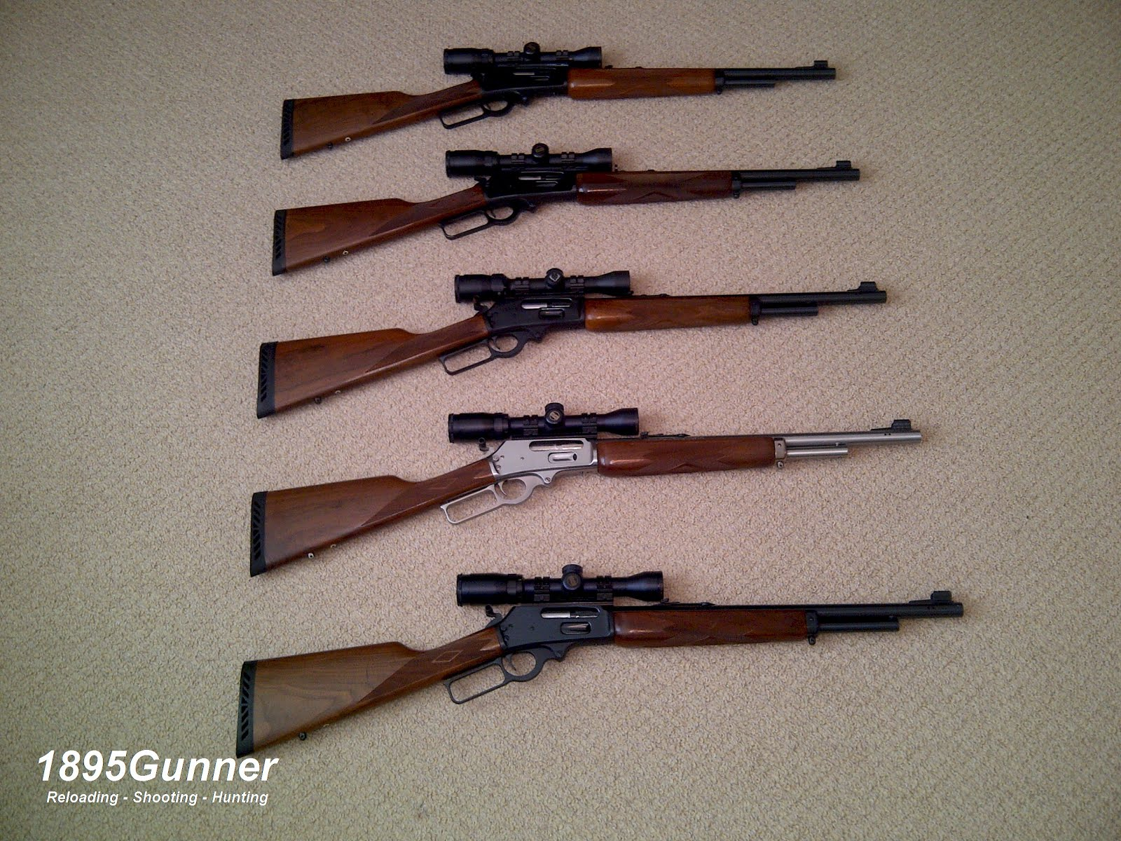 My Guide Gun Family