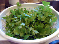 Freshly cut cilantro leaves, cleaned, stemmed and ready to use.