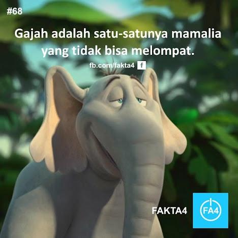 Gajah Tak Bisa Melompat