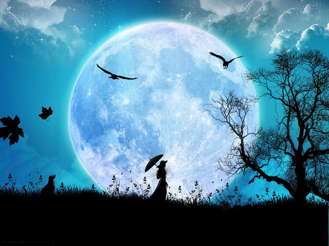 Download Moonlight night wallpapers