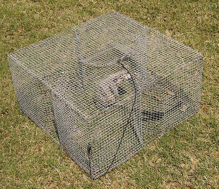 stealth survival riverwalker 39 s pics home made fish trap