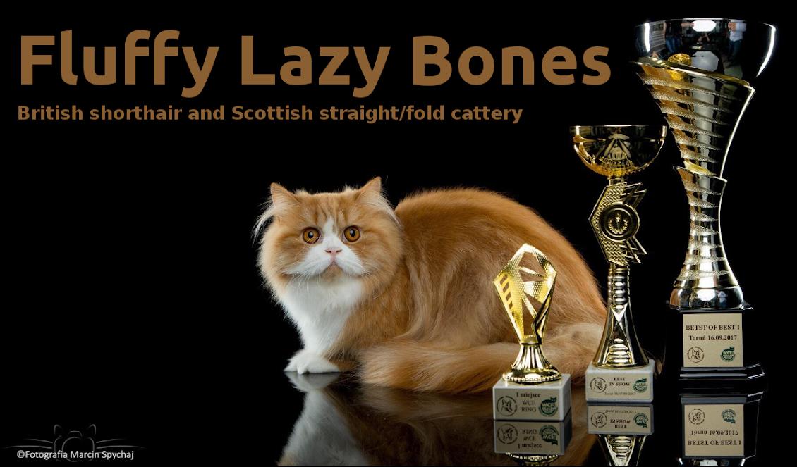 Fluffy lazy bones