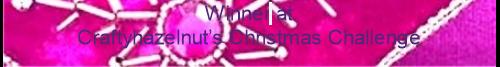 gagnante chez Crafty Hazelnut's Extra