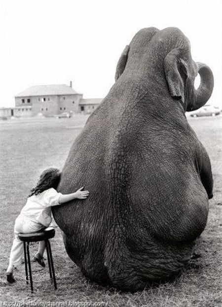 Baby and elephant.