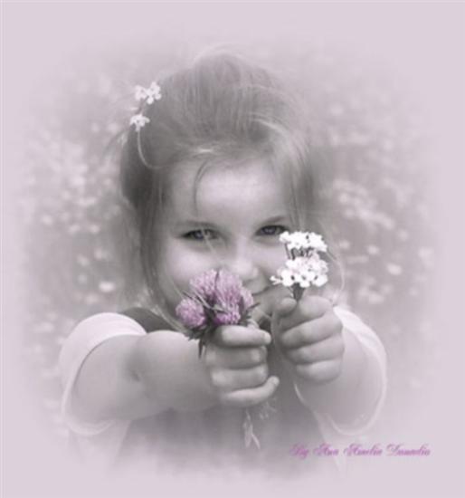 S   I Dau O Floare Doamnei   Nv      Toare