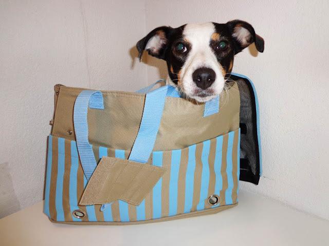 Mes produits Zolux: Concepteur, fabricant et distributeur de produits pour animaux de compagnie