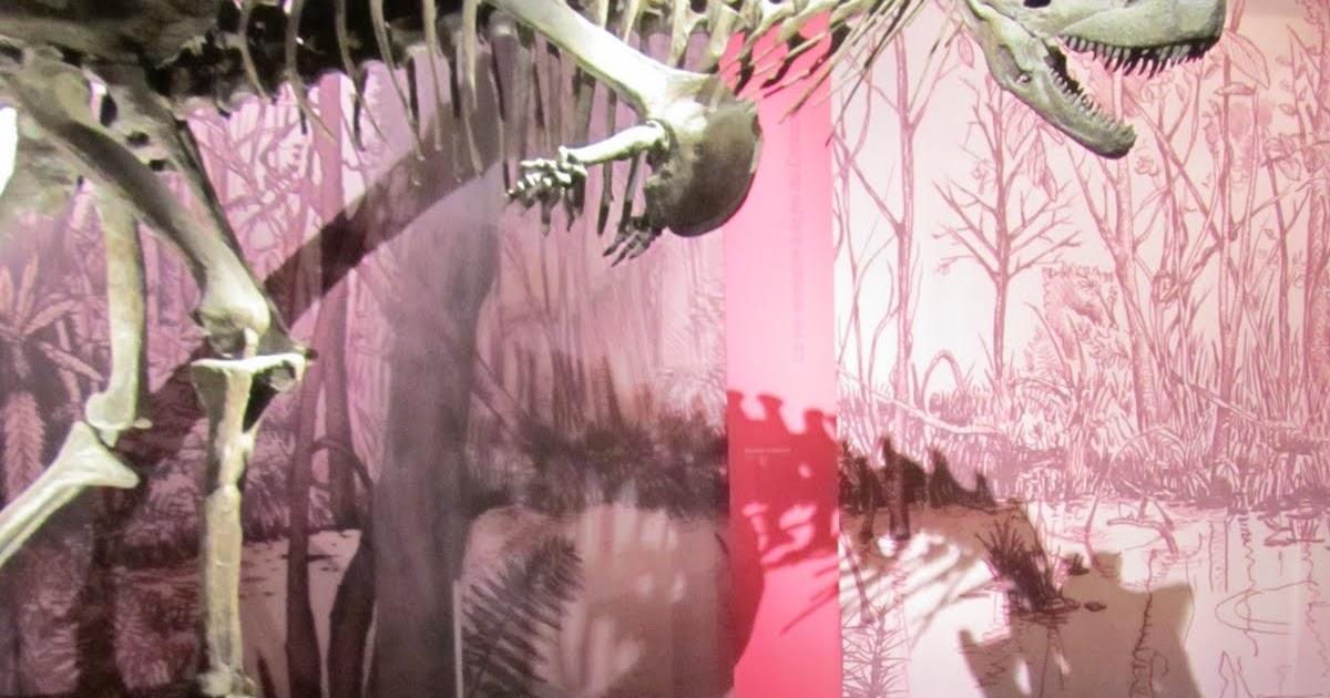 Top produits b b grande galerie de l 39 evolution jardin for Alexandre jardin nu
