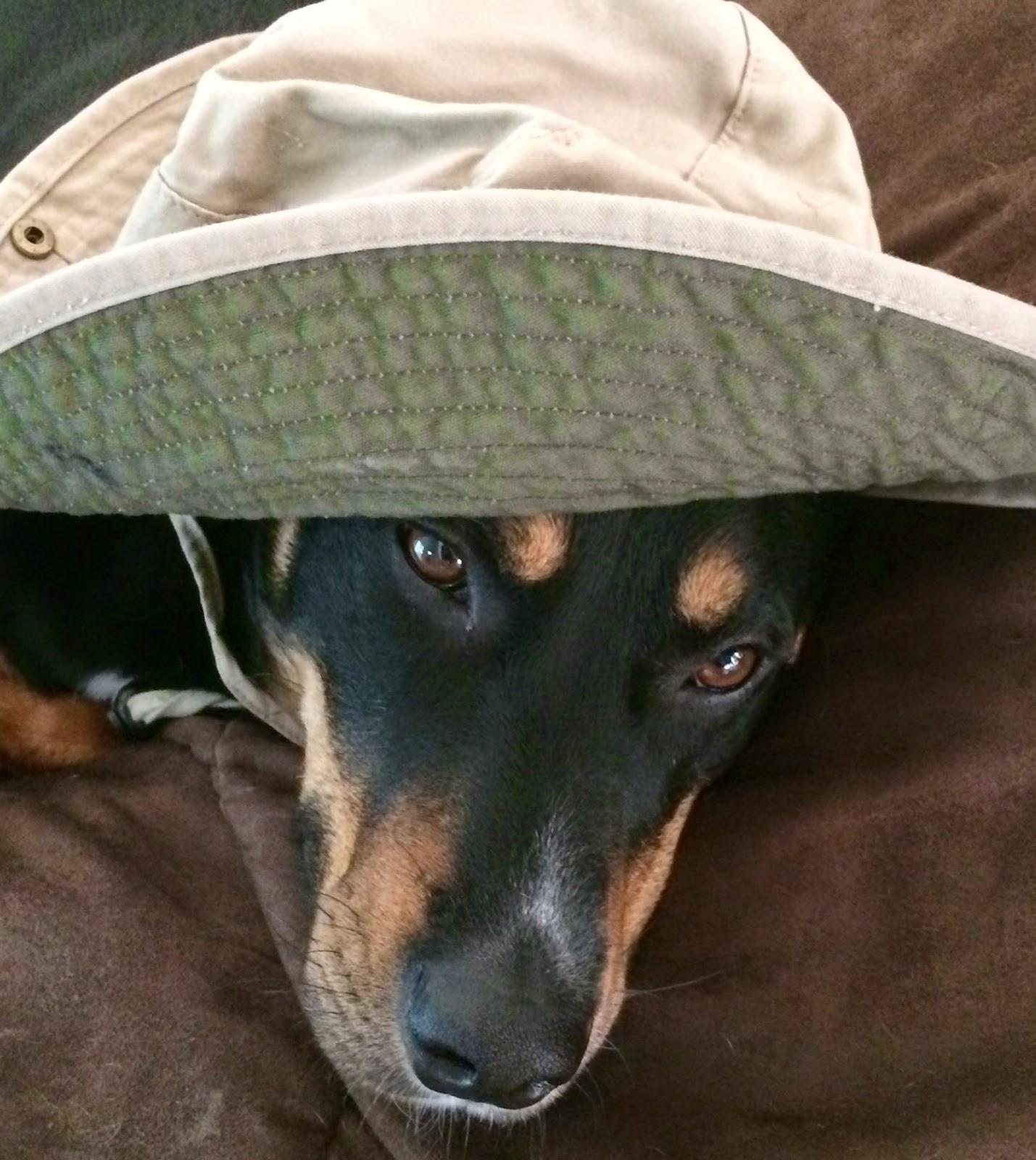 Luke in safari hat