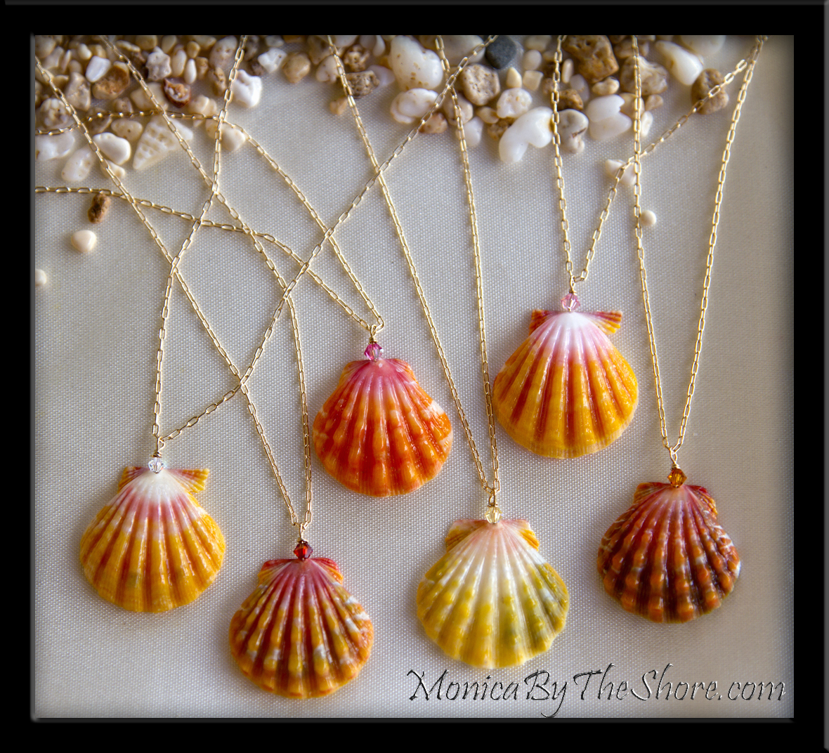 Buying Shells For Crafts