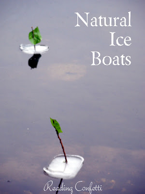 Natural Ice Boats