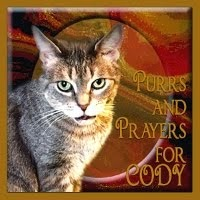 PURRS FOR CODY