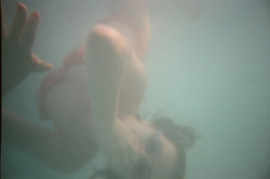 Reusable Underwater Lomo Camera Example Dolphin