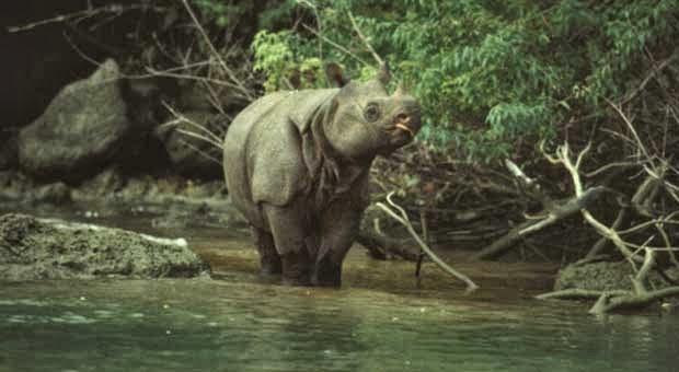 6 Tempat Wisata Serba Pertama di Indonesia