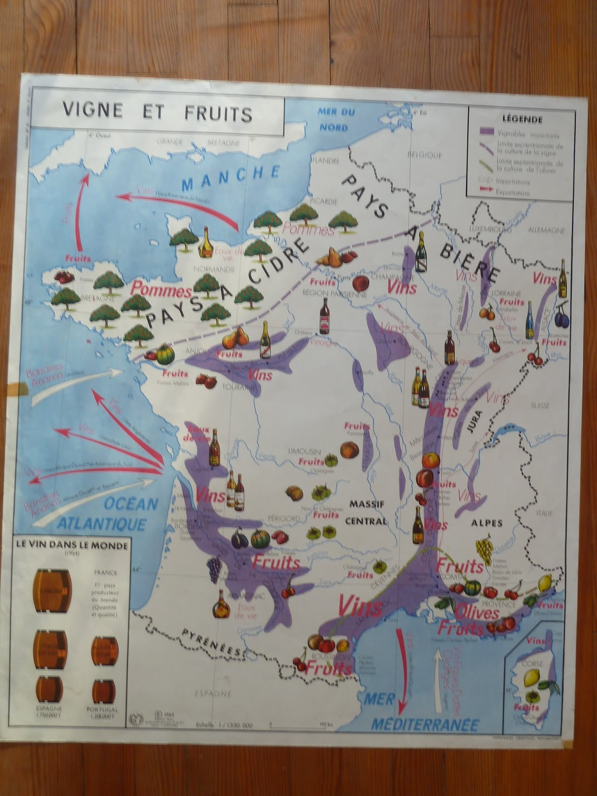 Vintage french posters botany animals anatomy old world maps from wine and fruit in france gumiabroncs Gallery