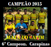 6º CAMPEONATO DE SOCIETY 2015