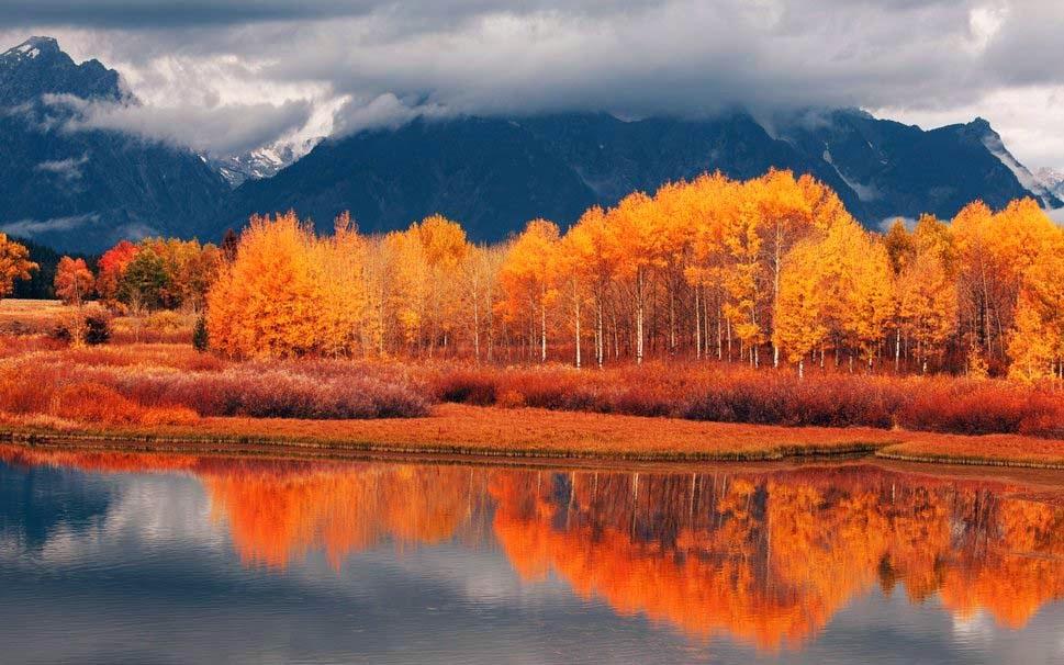 autumn-lake-in-golden-red-wallpaper