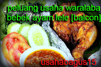 Ayam dan Ikan Lele merupahkan kuliner yang sudah tidak absurd lagi bagi penduduk rakyat In Peluang Usaha Waralaba BALCON [Bebek,Ayam,Lele Corner]