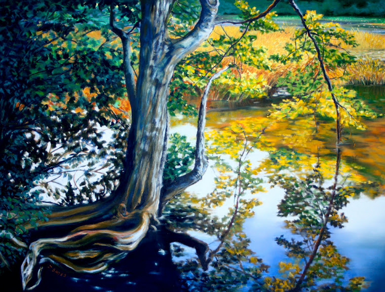 """Reflections on Eagle Pond"""