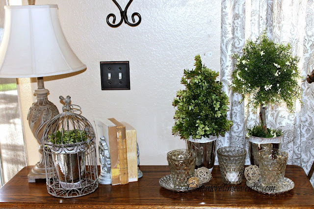 diy boxwood junipers